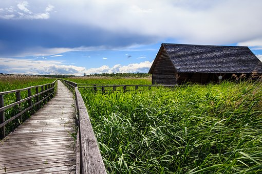 Spring Lake, Bad Buchau, Boardwalk, Nature Conservation