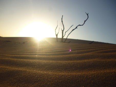 Sand, Dry So, Sun, Desert, Calm, Rocks, Dry
