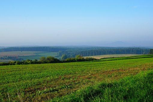 Field, Meadow, Emmingen, Liptingen, Tuttlingen