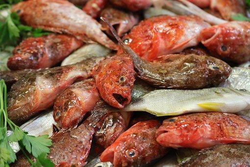 Fish Market, Fish Stand, Market Hall, Palma