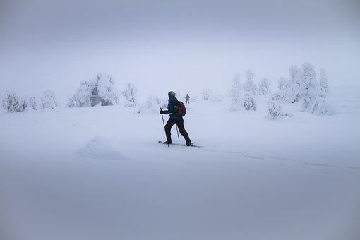 Snow Shoe Trek, Snowshoe, Fog, Foggy, Snow, Winter