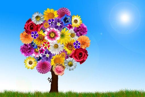 Flowers, Tree, Harmony, Harmonious, Garden, Many