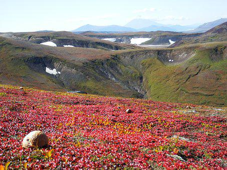 Mountains, Volcano, Mushrooms, Tundra, Autumn, Road