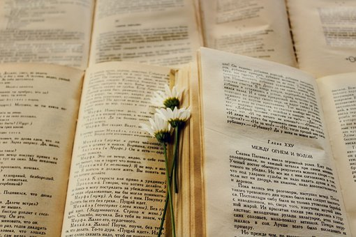 Books, Flower, Page, Book, Old Book, Beautiful