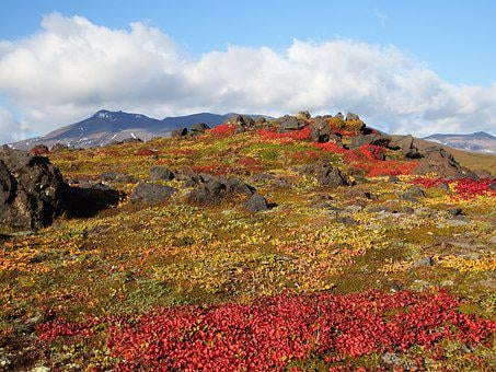 Mountains, Volcano, Tundra, Autumn, Road, Landscape