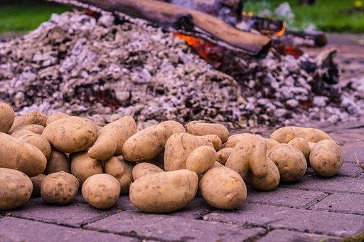 Potato Fire, Potato Roast, Embers, Eat, Drink, Autumn