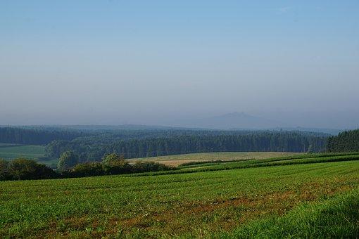 Meadow, Field, Emmingen, Liptingen, Tuttlingen, Weather