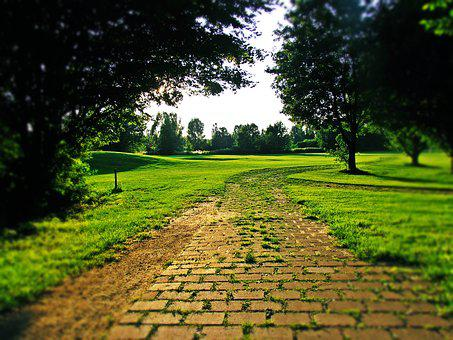 Field, Golf, Golf Course, Nature, Green, Game