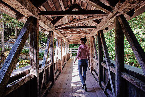 Travel, Bridge, Wood, Landmark, Summer, Nature, Journey
