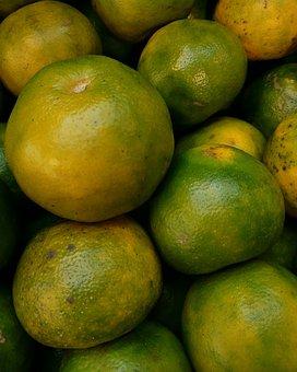 Lemon, Fruit, Citrus, Vitamin, Green, Nature, Orange