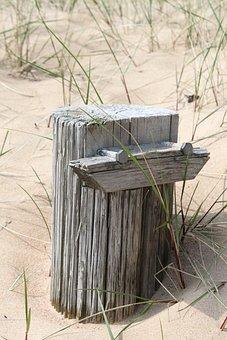 Beach, Sand, Stump, Nature, Summer, Coastal, Strandgräs
