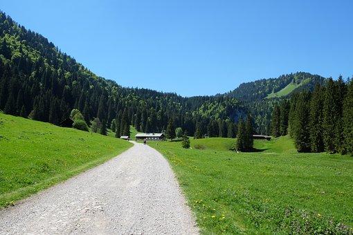 Bavaria, Schwarzentennalm, Hiking, Sun, Summer, Alpine