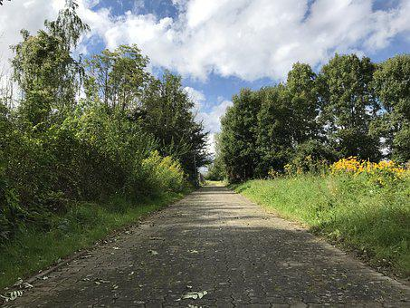 Sidewalk, Away, Road, Clouds, Sky, Flowers, Roses