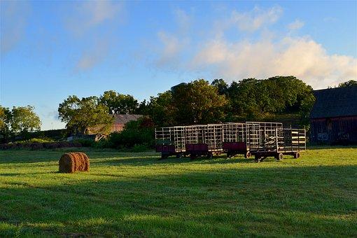 Farmland, Sunrise, Grass, Farm, Landscape, Field