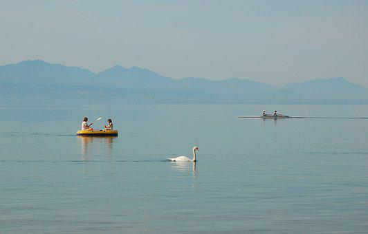 Rubber Boot, Lake, Geneva, Lausanne, Lake Geneva