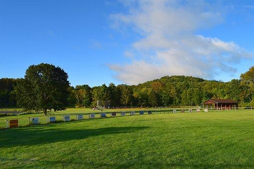 Field, Sunrise, Green, Grass, Sky, Blue, Clouds, Summer