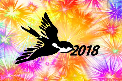 Fireworks, New Year's Day, Greeting, Bird, Bill