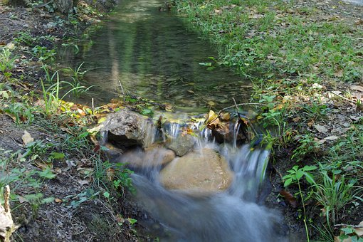 Stream, Water, Forest, Orsomarso, Calabria