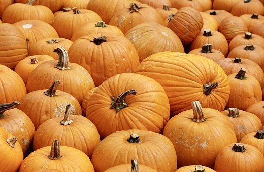Pumpkins, Orange, Autumn, Pumpkin, Decoration, Harvest