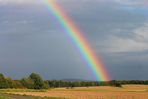 Rainbow, Sky, Fields, Rainbow Colors, Evening Sun