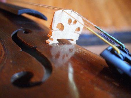 Violin, Music, Instrument, Classical, Classic, Stringed