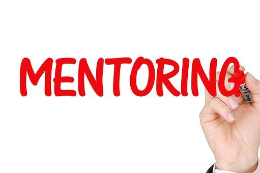 Mentoring, Business, Success, Mentor, Teamwork