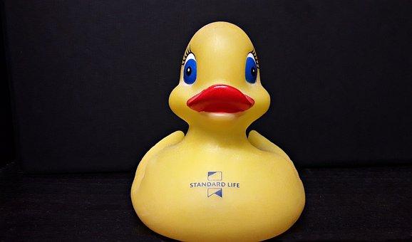 Duck, Rubber Duck, Water, Bath, Yellow, Fun