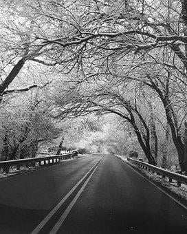 Winter, Road, Black And White, Snow, Cold, Nature