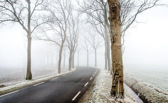 Winter, Road, Scene, Snow, Cold, Nature, Frost, White