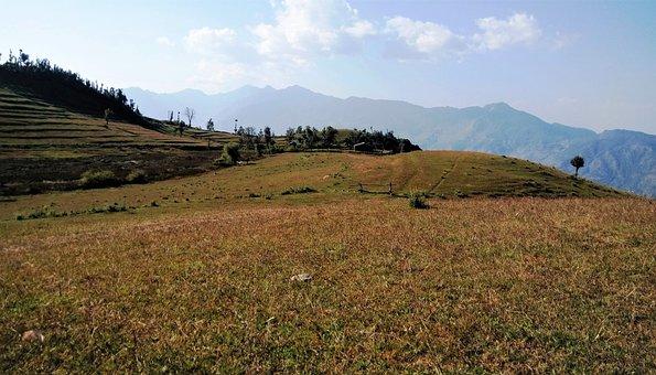 India, Himalayan Grassland, Meadow, Pasture, Mountain
