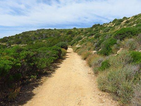Away, Trail, Landscape, Landscape Way, Lane, Meditation