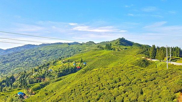 Kanyam, Ilam, Nepal, Heaven-on-earth, Mechi, Highway