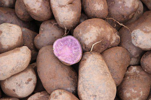 Purple Potatoes, Old Potato, Staple Food, Market, Food