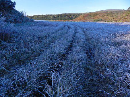 The First Frost, Early Autumn, Indian Summer, Cold