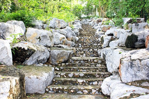 Stair, Nature, Forest, Summer, Step, Green, Outdoor