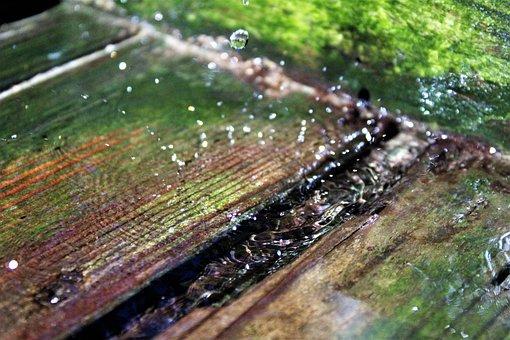 Drop Of Water, Wood, Summer, Nature, Water Pump, Drip