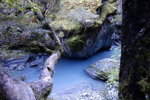 Nature, New Zealand, Rob Roy