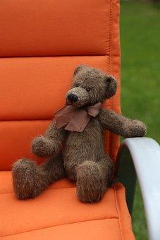 Teddy, Plush, Bears, Cute, Toys, Teddy Bear, Soft Toy