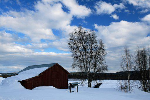 Winter, Cloud, Barn, Himmel, Landscapes, Snow, White
