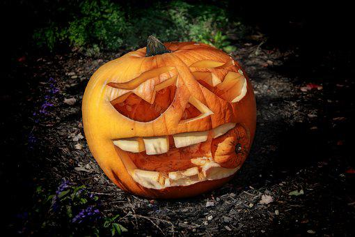 Pumpkin, Haloween, October, Autumn, Scary, Horror, Jack