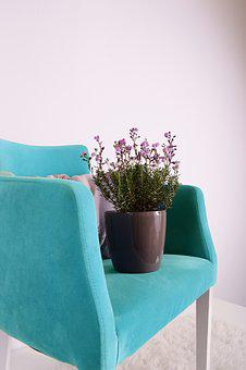 Flowerpots, Green, Grow, Chair, Pot, Pottery