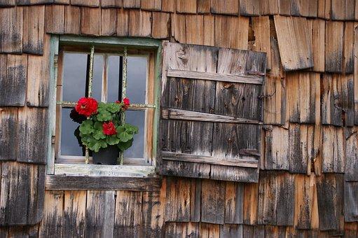 Window, Vacation, Shingle, Housewife, Wood Shingles