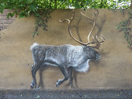 Moose, Wall Art, Wall, Zoo, Berlin, Animal, Nature