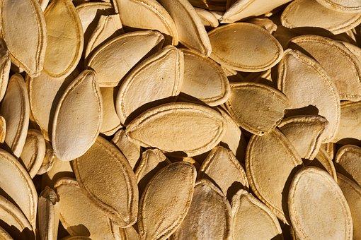 Pumpkin Seeds, Seed, Pumpkin, Fresh, Macro