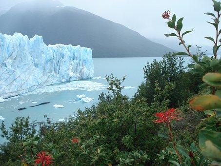Iceberg, Ice, Glacial, Lake, Glacier, Iceland