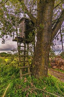 Hunter Was, Log Cabin, Hut, Wood, Old, Forest, Nature