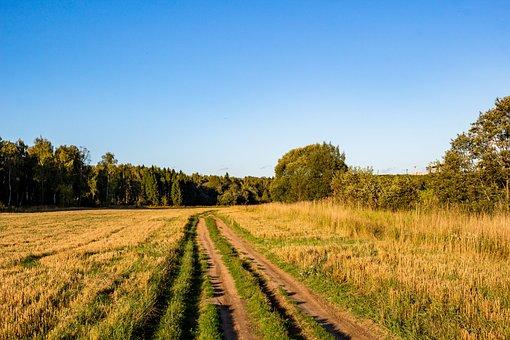 Road, Rural, Village, Countryside, Landscape, Summer