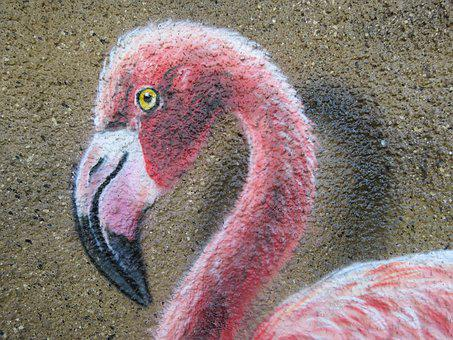 Flamingo, Wall Art, Wall, Zoo, Berlin, Animal, Nature