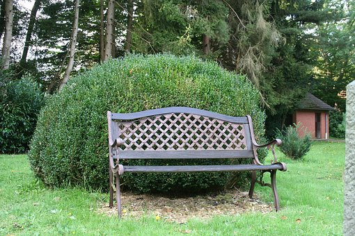 Garden Bench, Boxwood, Bank, Relax, Garden Furniture