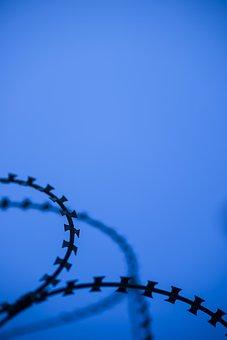 Barbed Wire, Sharp, Razor, Danger, Blue, Military, War
